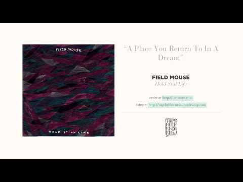 """A Place You Return to in a Dream"" by Field Mouse"