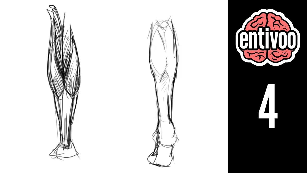 Aprende a dibujar las piernas de una persona - YouTube