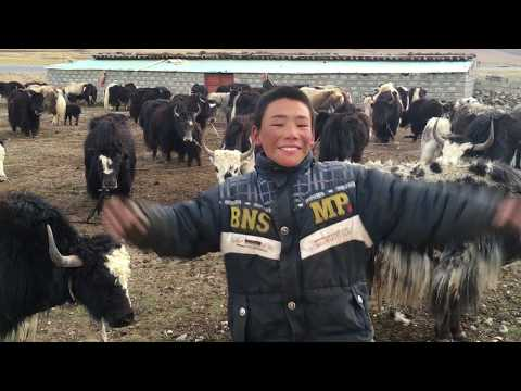 Tibet Cycle Tour 2016: Chengdu-Lhasa