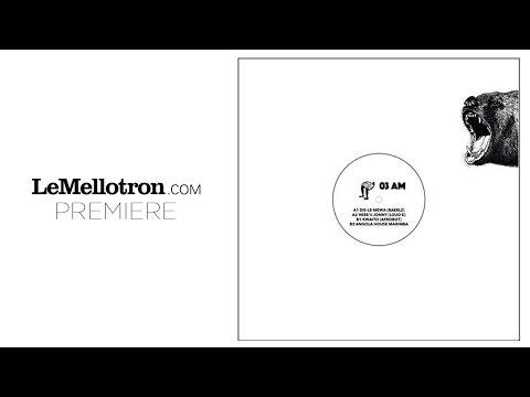 Baerlz - Dis-Le-Mewa | Le Mellotron Premiere