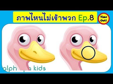 เกมจับผิดภาพสัตว์สำหรับเด็ก Photo Hunt Game สือการเรียนรู้สำหรับเด็ก Learning Animal พร้อมเฉลย Ep.8