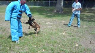 Little Rock K-9 Academy's - Handler Course Aggression Control