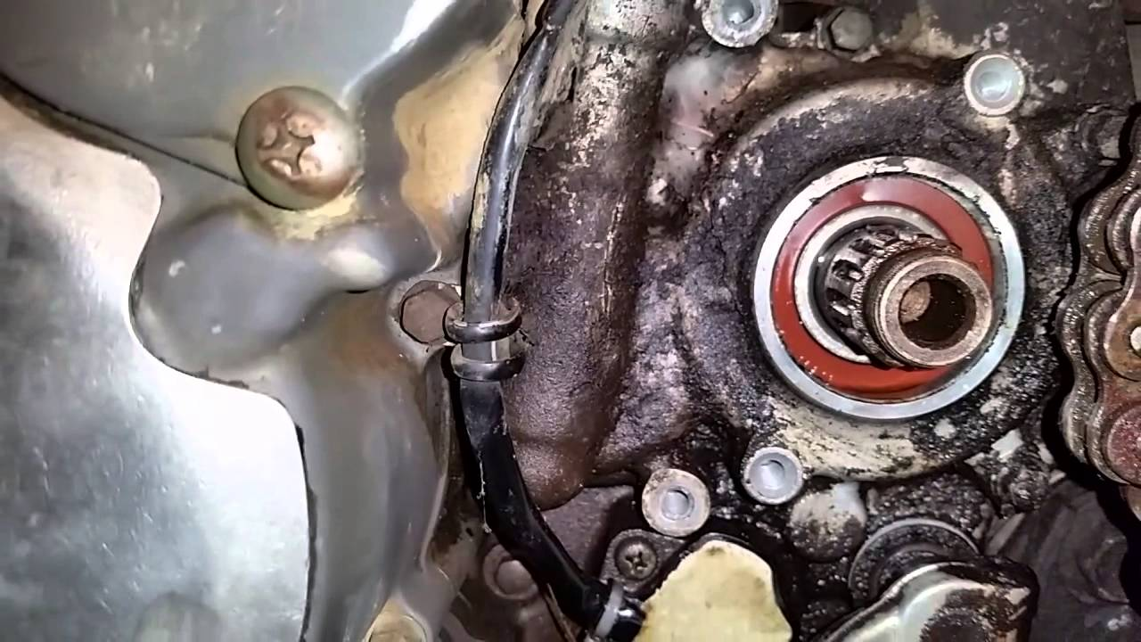Drz400 countershaft oil leak