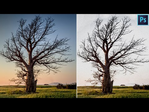 How to Cut Out Trees Easily   Photoshop Tutorial thumbnail