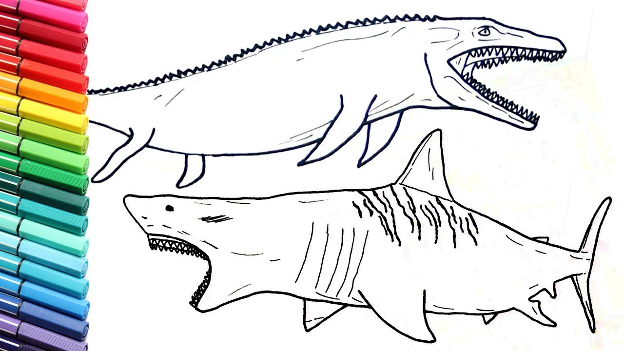 megalodon shark and jurassic world mosasaur dinosaurs