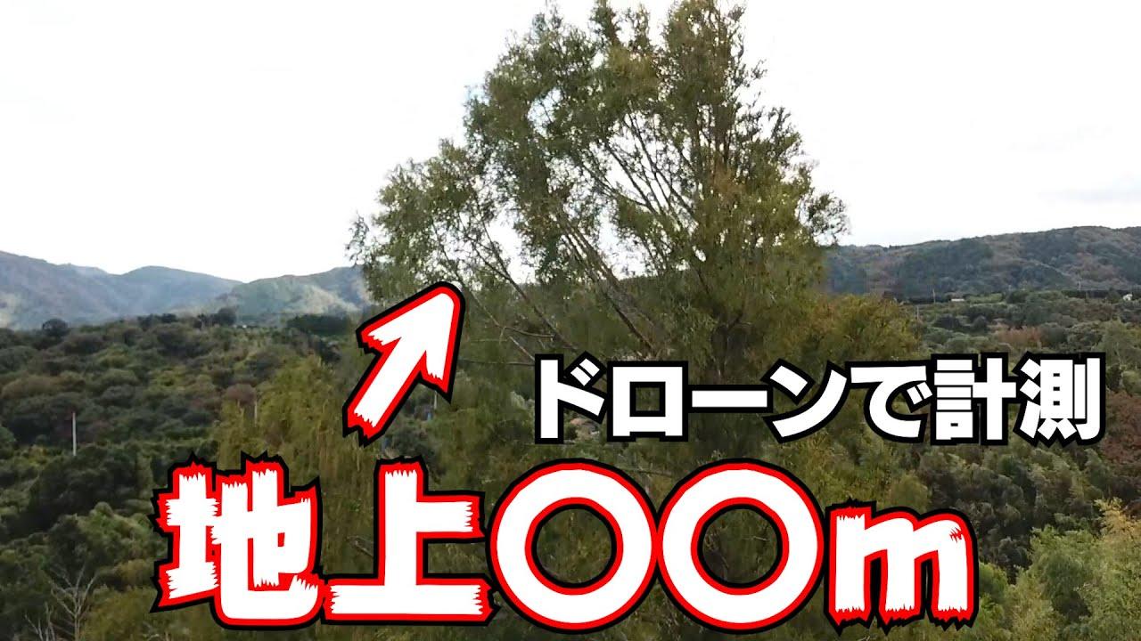 ドローンで山の御神木を計測してみた!