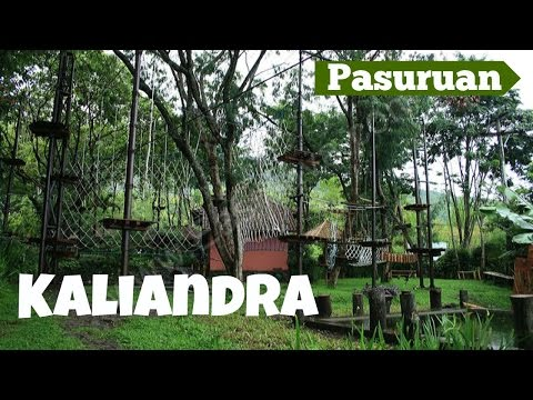 Kaliandra Sejati, The Place for Developing Education & Togetherness, Pasuruan - East Java