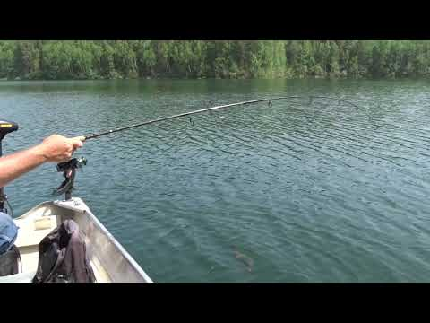 Fantastic Speckled Trout fishing