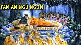 Đêm Trằn Trọc Khó Ngủ - Hãy Nghe Phật Kể về Nhân Quả Trong Cuộc Sống Để Tâm An Hướng Thiện Ngủ Ngon