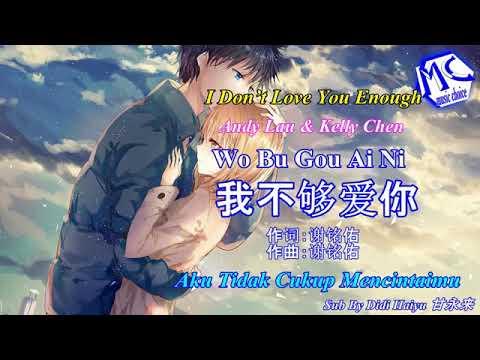 Andy Lau 刘德华 & Kelly Chen 陈慧琳 - Wo Bu Gou Ai Ni 我不够爱的你 (Aku Tidak Cukup Mencintaimu)