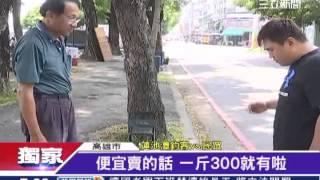 獨/蓮池潭變釣蝦場!瘋釣小龍蝦還擺攤│三立新聞台 thumbnail