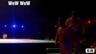 Sumo wrestling manipur   sangai festival   sumo final fight and sumo wrestling rules
