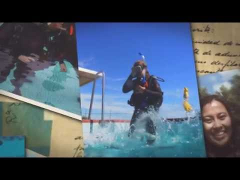 Learn To Dive In Sydney