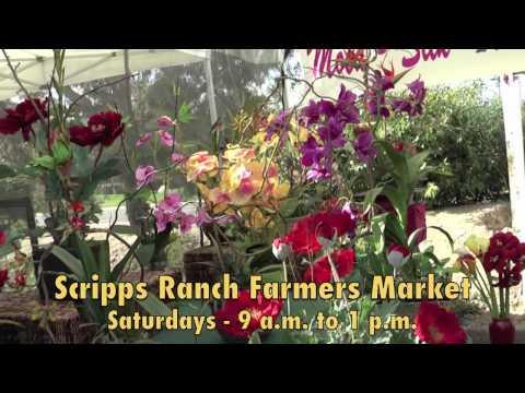 San Diego's Certified Organic Farmers Market