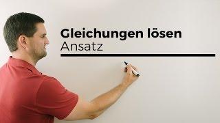 Gleichung lösen und LGS lösen | Mathe by Daniel Jung