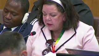 英国常驻联合国代表凯里·皮尔斯在联合国呼吁中国停止对新疆维吾尔人的拘禁
