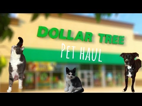 BEST DOLLAR TREE PET PRODUCTS AND MINI HAUL