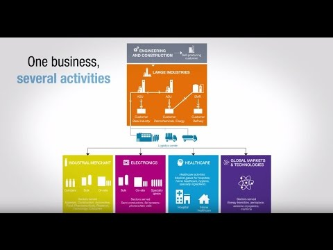 Air Liquide: One Business, Several Activities