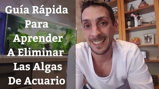 🔵 Guía Rápida Para Aprender A Eliminar Las Algas Del Acuario (Acuarios MB)