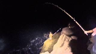 shaun s battle with a 100 pound ulua gaint trevally at kaena point