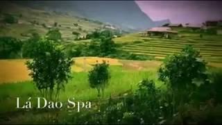 Ta Van Village - Sapa