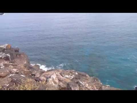 Islas Salvajes