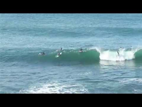 Surfing Dee Why Point and Winki Pop