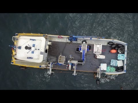 First Aquaculture Harvest In U.S. Federal Waters