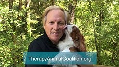 Therapy Animal Expo - Message from David Frei
