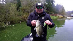 Bass Fishing Tenmile Lakes- Lakeside Oregon