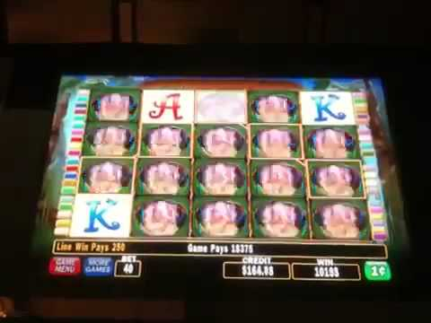 Video Free slots lions 50