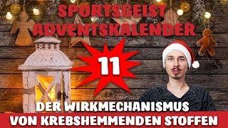 DER WIRKMECHANISMUS von KREBSHEMMENDEN STOFFEN