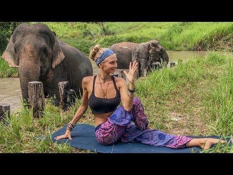 Vinyasa Power Flow Class ♥ 20 Minute Yoga | Cambodia Wildlif