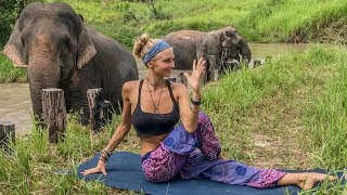 Vinyasa Power Flow Class ♥ 20 Minute Yoga | Cambodia Wildlife Sanctuary