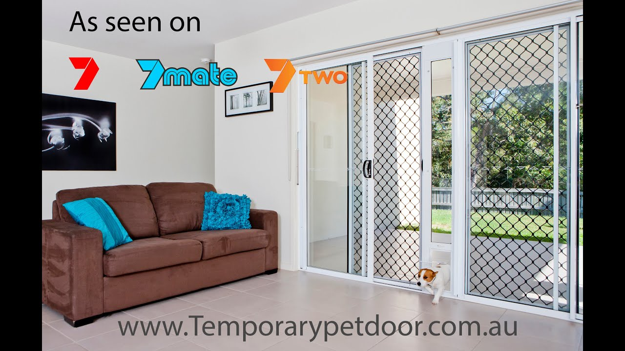 door dog doggie by kunshier ramp pin pinterest gary automatic doggies