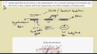 2.77b Thermoregulation