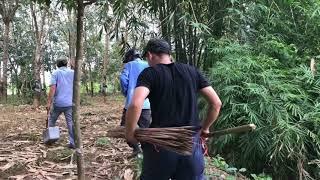 Mã Đà, Chuyến Câu Cá Để Đời Vì Câu Được Cá Trèn Khủng Cả Đời Mới Thấy( Dã Ngoại Mã Đà 2017)