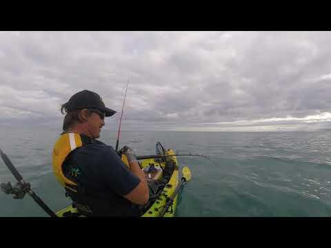 Kayak fishing urenui taranaki