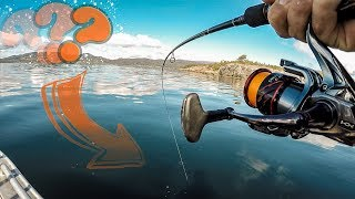 Wir FANGEN sie alle!! Allround angeln in Norwegen auf möglichst viele Fischarten. Die CHALLENGE