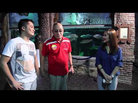 Only Fresh Water Fish Museum in the Philippines - Philippine Book of Records
