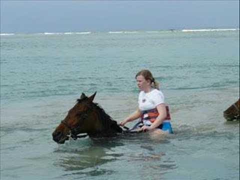 Jamaica&Cayman Islands