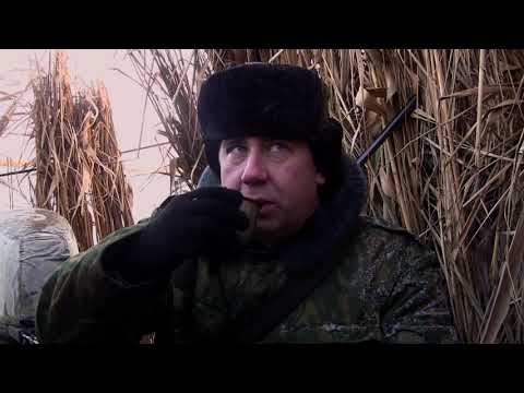 Настоящая русская охота. Пять зорь на Маныче