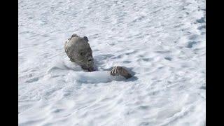 Hallan congelada momia de alpinista en Pico de Orizaba