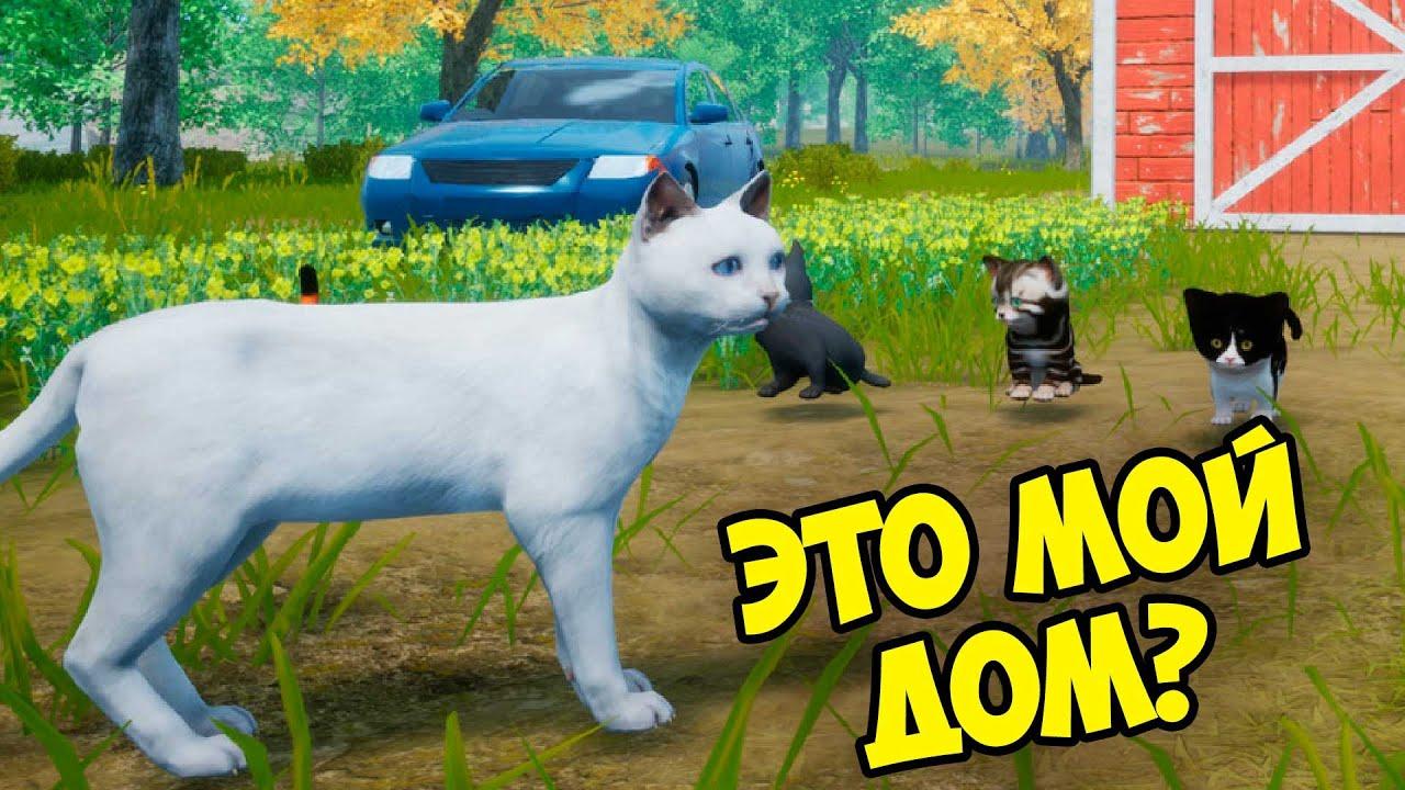 Симулятор КОТА и КОШКИ #1 Первая охота Новый сим на ферме в игре Cat Simulator Meow