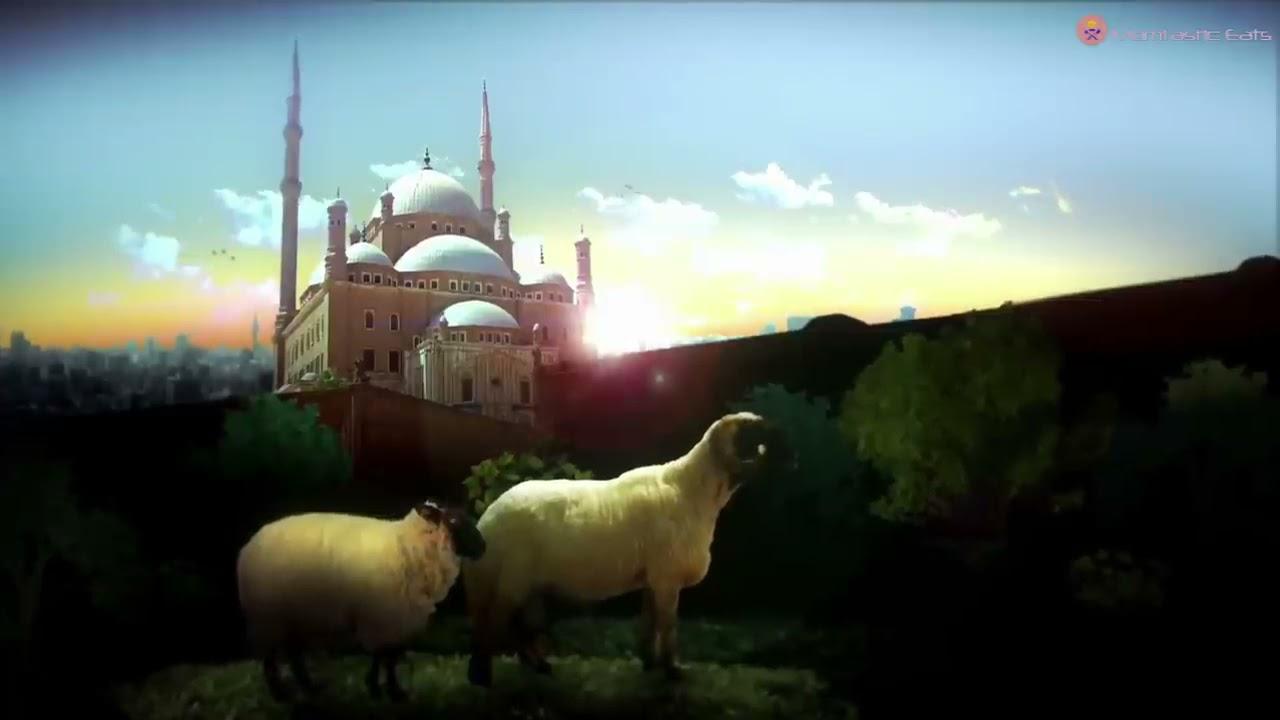 Download 📯 EID AL ADHA MUBARAK 🌙