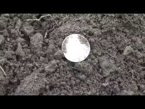 1899 Newfoundland 50 cent coin .Metal Detecting Two 1800's Silver coins .