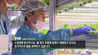 [녹색의 꿈] - 식물공장, 미래 농업의 대안인가? /…