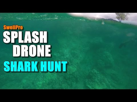 SwellPro Waterproof SPLASH DRONE Review - Part 4 - Shark Hunt!