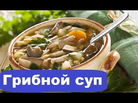Грибной суп более 100 рецептов с фото рецепты с