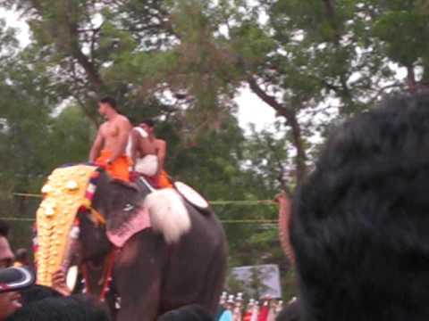 Kollam Pooram By Renjith John, Mulavana, Kollam